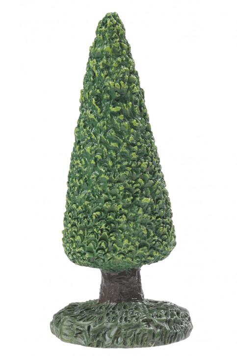 Buchsbaum Spitz, ca. 7 cm