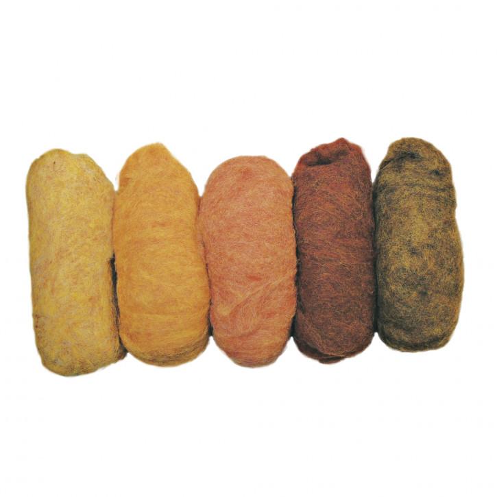 Reine Schurwolle Vlies, 5 Farben à 20g, Beutel 100g, Herbstmix